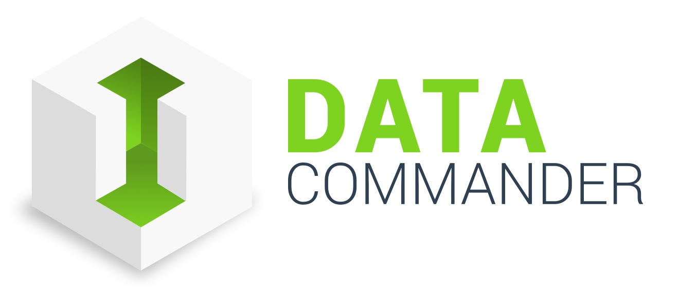 Data Commander Logo